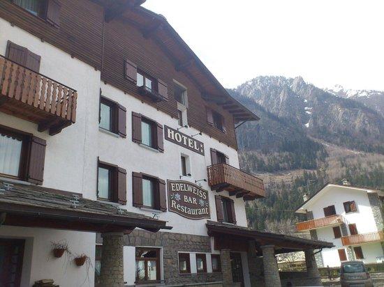 Albergo Edelweiss : HOTEL Edelweiss