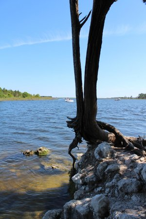 San Marcos de Apalache Historic State Park: Overlooking the river