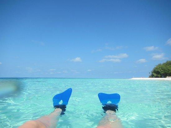 Adaaran Club Rannalhi : Snorkeling