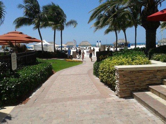 Marco Island Marriott Resort, Golf Club & Spa : Beautiful Grounds