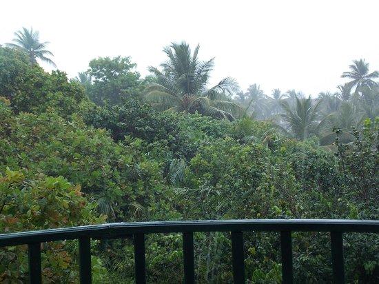 Sauipe Resorts: Vista desde el balcón
