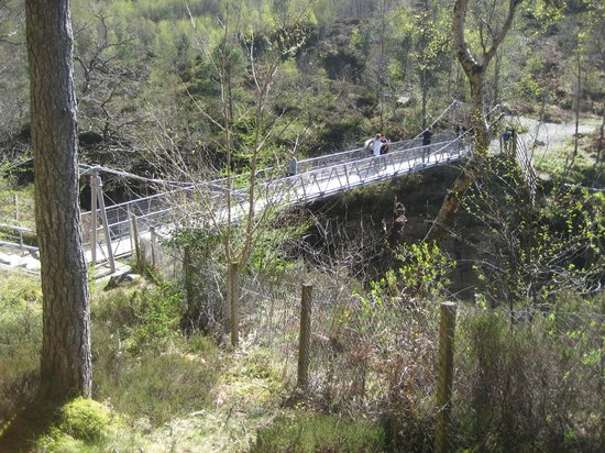Corrieshalloch Gorge: View of swaying footbridge over gorge