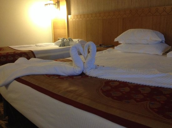 Royal Dragon Hotel: Swans