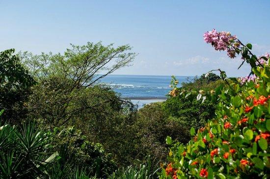 Hotel Villas Gaia: Ocean View