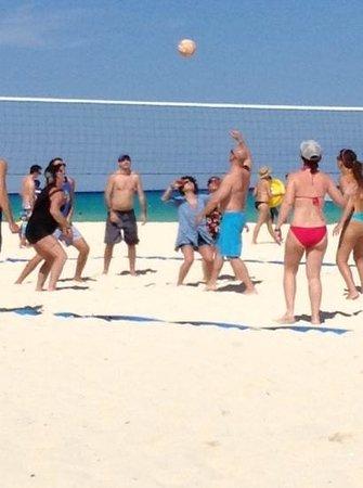 Sandos Playacar Beach Resort : Beach Volleyball