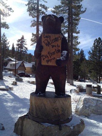 Big Bear Region, CA: Big bear when it's white