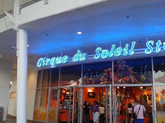 La Nouba - Cirque du Soleil: Awesome