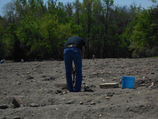 Crater of Diamonds State Park: Diamond field