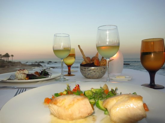 Cocina del Mar: Excellent food and wine!