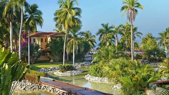 Villa del Sol Resort: Blue skies and palm trees surround Viceroy Zihuatanejo