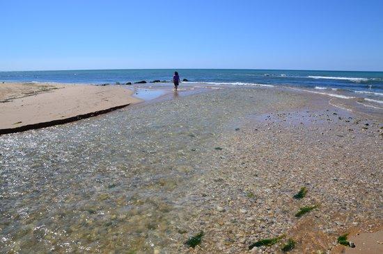 Riserva Naturale del Fiume Irminio: la foce