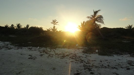 Dreams Tulum Resort & Spa: Atardecer