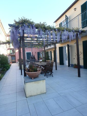 A Durmi: Wisteria arbor in the courtyard