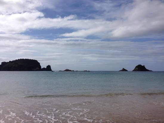 Hahei Holiday Resort : Gorgeous Hahei