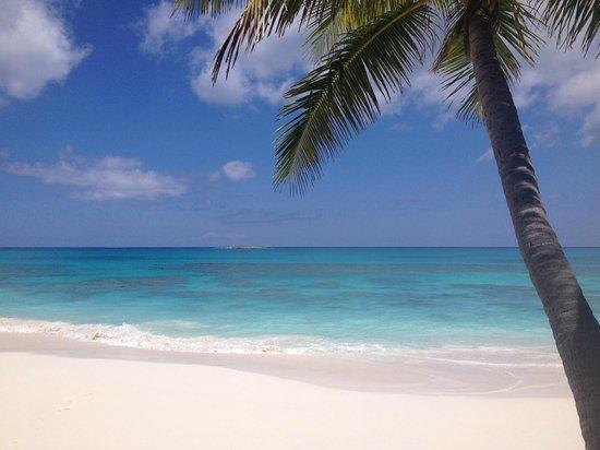 Breezy Hill Exuma Bahamas: Guest House Beach