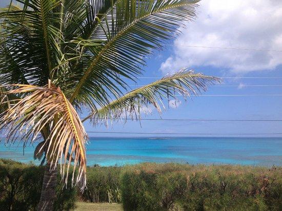 Breezy Hill Exuma Bahamas: Front Yard