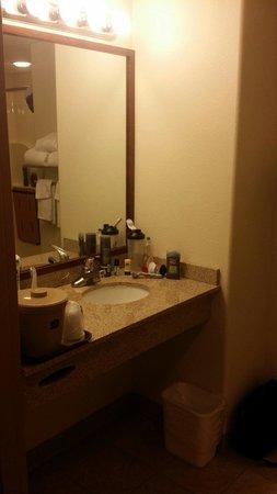 BEST WESTERN Cooper's Mill Hotel: Sink in handicap room