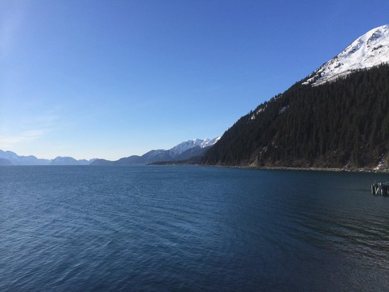 Kenai Fjords Tours: Resurrection Bay