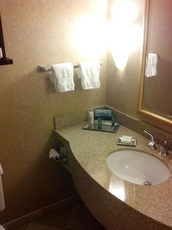 Hilton Tampa Airport Westshore: Suite bathroom