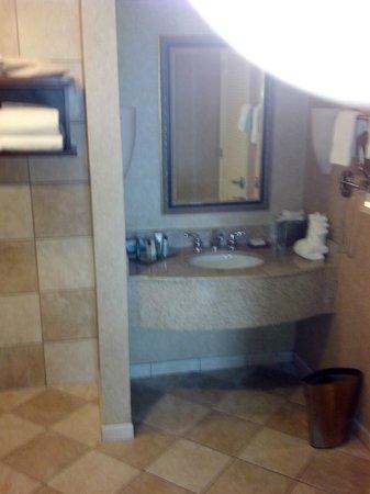 Hilton Tampa Airport Westshore : Bathroom in suite