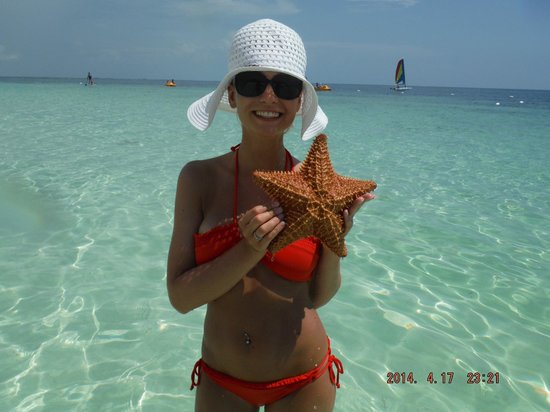 Excellence Playa Mujeres: we found a starfish