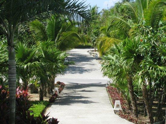 Grand Sirenis Riviera Maya Resort & Spa: Beautifully kept gardens