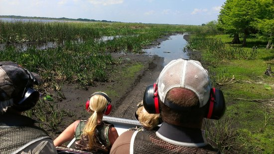 Alligator Cove Airboat Nature Tours: Let the adventure begin