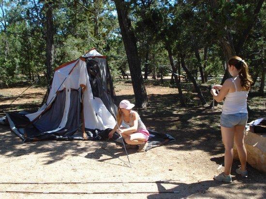Desert View Campground: Campground