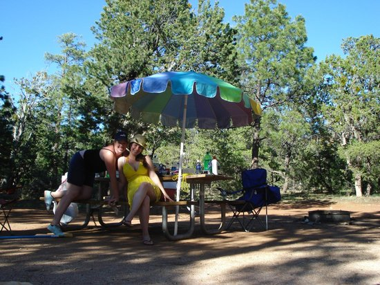 Desert View Campground: Campground