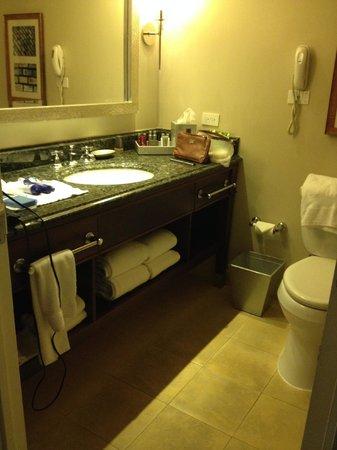 San Juan Marriott Resort & Stellaris Casino : Bathroom from the door