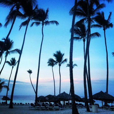 Dreams Palm Beach Punta Cana: Beach at sunset