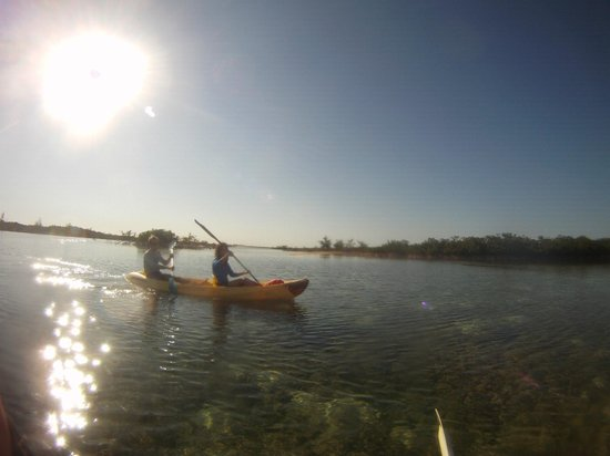 Bahamas Out Island Adventures - Day Trips: we love our mangrove creeks, save the bays, conchservation et al