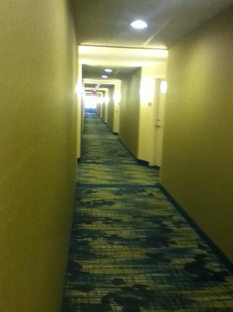 SpringHill Suites Alexandria Old Town/Southwest: Hallway