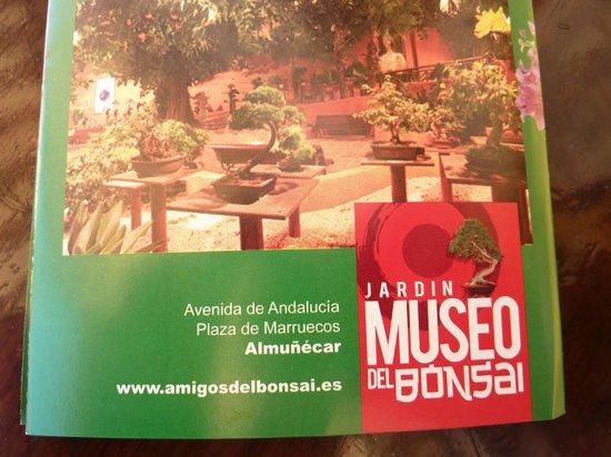 Jardín-Museo del Bonsái: Bonsai Garden