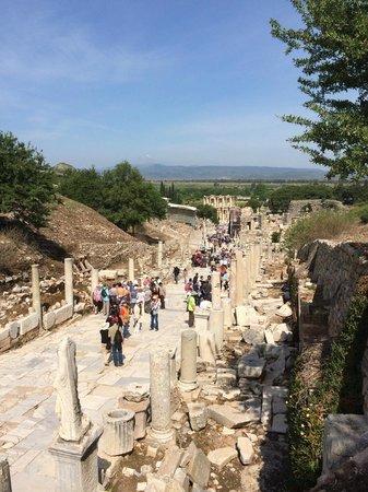 Vieille ville d'Éphèse : 古代ローマの往時を忍ばせる風景