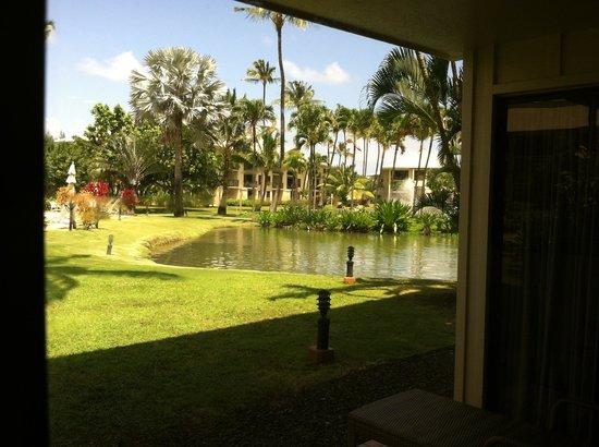 Kauai Beach Villas: View from our lanai