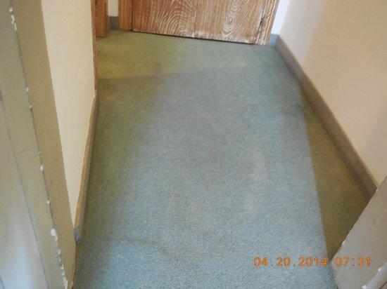 Grand Hotel Minerva : Poor condition of the trim, door and carpet
