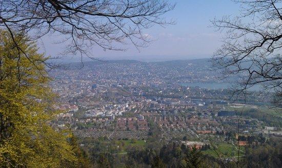 Uetliberg Mountain : View from Uetliberg