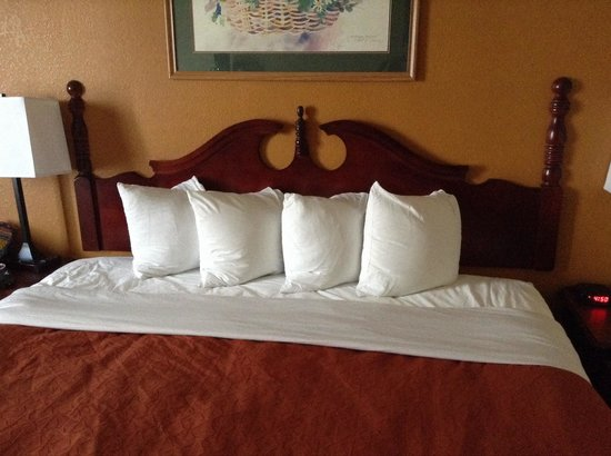 Country Inn & Suites By Carlson, Richmond I-95 South: Cute, but worthless for sleeping!