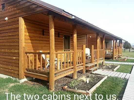 Elijah's Rest Cabins & Breakfast : Neighbors