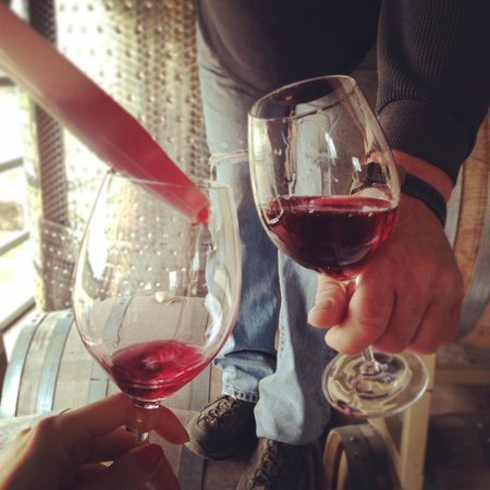 Culinary Adventure Co. : Sampling a 2013 red from the Barrel at Three Dog Winery