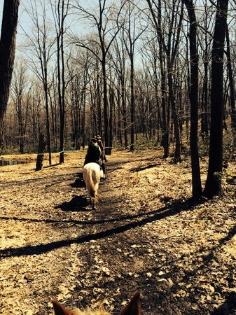 Pocono Manor Resort & Spa: horse back riding