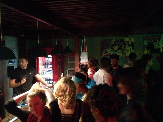 Botanic Hostel: Bar