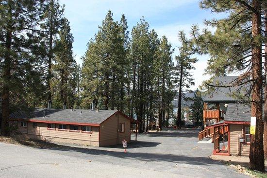 Honey Bear Lodge & Cabins: Vue générale