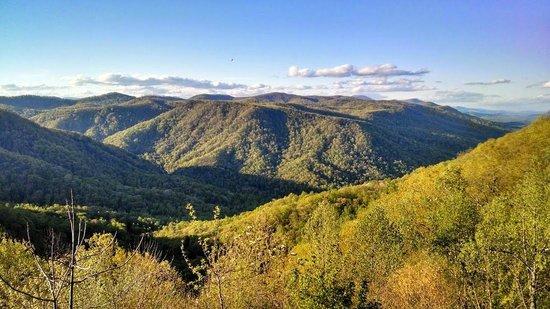 Saluda Mountain Lodge: Backyard View Straight-Away
