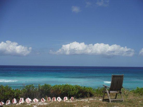 The Ocean Dream Beach Resort : Spectacular