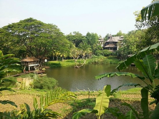 Four Seasons Resort Chiang Mai: Rice Terrace Pavillion