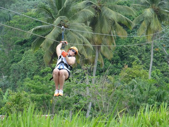 Canopy Adventure Zip Line Tours : Action (from purchased pics)