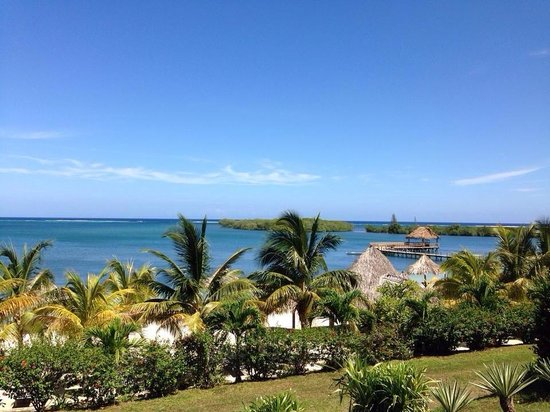 Turquoise Bay Dive & Beach Resort: Vista del hotel a si playa privada