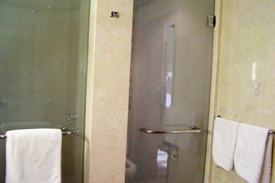 Kigali Serena Hotel : Shower stall & toilet room
